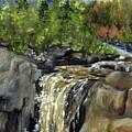 Illgen Falls by Joi Electa