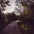 Illuminated Foot Path by Howard Roberts