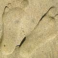 Illusionary Feet by Gwyn Newcombe