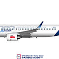 Illustration Of Airbus A320 Neo F-wnew by Steve H Clark Photography