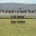 Imogen Cunningham Quote by Tony Murtagh
