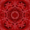 Imperial Red Rose Mandala by Georgiana Romanovna