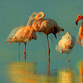 Impressionist Flamingo Abstract by Shelli Fitzpatrick