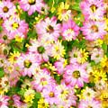 Impressionist Floral Ix by Tina Baxter