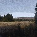 Impressionist Meadow by Kevin Humphrey