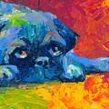 impressionistic Pug painting by Svetlana Novikova
