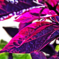 Impressionistic Purple Leaves by David Frederick