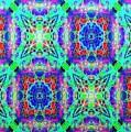 Impressions - Fractal Fireworks by Charmaine Zoe