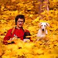 In A Yellow Wood - Paint by Steve Harrington