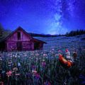 In Dreams by Nhat Le