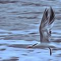 In Flight by Patricia Black