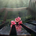 In Memory by Svetlana Sewell