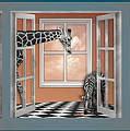 In The Box Zoo Peek A Boo by Alissa Beth Photography