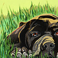 In The Grass by Pamela Trueblood