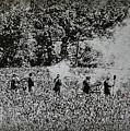 In The Heat Of Battle - Gettysburg Pa by Bill Cannon