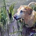 In The Marsh by Sheila Wedegis