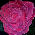 In The Pink by Karen Jane Jones