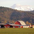 In The Shadow Of Mt. Baker by Victor K