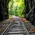 In The Tunnel by Debra and Dave Vanderlaan