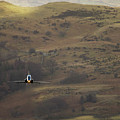 Mach Loop by Angel Ciesniarska