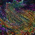 In The Whirl Of Light by Iliyan Bozhanov