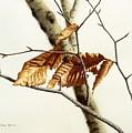 In The Winter Breeze by Conrad Mieschke