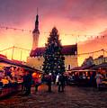 Incredible Christmas Market In Tallinn, Estonia by Gen Vagula