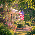 Independence Day by Robert Anastasi