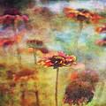 Indian Blanket Landscape 0221 Idp_2 by Steven Ward