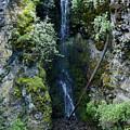 Indian Canyon Waterfall by Ben Upham III