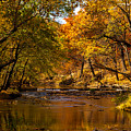 Indian Creek In Fall Color by Jeff Phillippi
