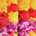 Indian Flower Garland by Delphimages Photo Creations