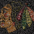 Indian Hockey Puck Mosaic by Paul Van Scott