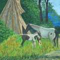 Indian Horses by Charles Vaughn