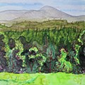 Bullhead Mountain, Indian Lake Overlook Panorama 3 by Bethany Lee