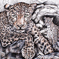 Indian Leopard by Trish Taylor Ponappa