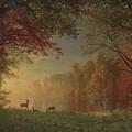 Indian Sunset Deer By A Lake by Albert Bierstadt