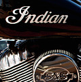 Indian Tank 112416 by Rospotte Photography