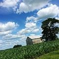 Indiana Farm Scene by Rancher's Eye Photography