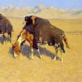 Indians Simulating Buffalo by Frederic Sackrider Remington