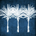 Indigo And White Palm Trees- Art By Linda Woods by Linda Woods