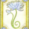 Indigo Lily by Erin M R Flores