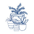 Indigo Potted Succulents- Art by Linda Woods by Linda Woods