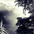 Indonesia Sky Line by Christina -