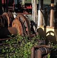 Industrial Salad by Robert Potts