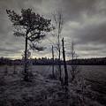 Infradawn by Jouko Lehto