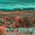 Infrared Arizona by Paul Freidlund