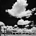Infrared Indian River State College Hendry Campus #1 by Bill Piacesi