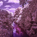 Infrared River by Galeria Trompiz