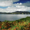 Inishowen Peninsula, Co Donegal by The Irish Image Collection